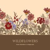 Wildflowers Иллюстрация вектора в типе год сбора винограда праздничная открытка Стоковое Изображение