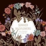 Wildflowers Иллюстрация вектора в типе год сбора винограда праздничная открытка Стоковая Фотография RF