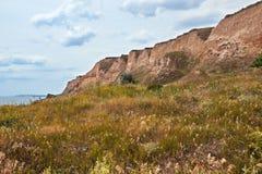 Wildflowers на высоком побережье морем, красивом прибрежном ландшафте, концепции перемещения Стоковые Изображения RF