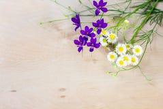 Wildflowers на деревянной предпосылке Стоковое Фото