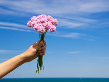 Wildflowers. Female hand holding some wildflowers against a blue sky Stock Image
