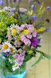 wildflowers foto de archivo