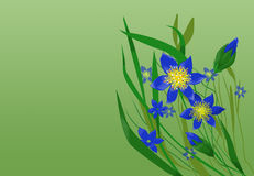 Wildflowers vector illustratie