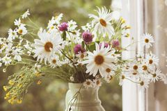 Wildflowers along with daisies in ceramic vase in vintage styl. Stock Images