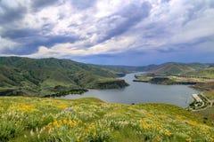 Wildflowers au-dessus de Lucky Peak Reservoir près de Boise, Idaho Images libres de droits