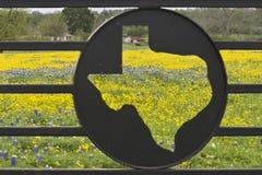 Wildflowers auf einer Ranch Lizenzfreies Stockbild