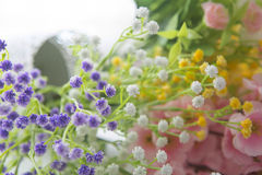 Wildflowers on the background of wood Stock Photography