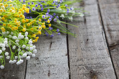 Wildflowers on the background of wood. Royalty Free Stock Images
