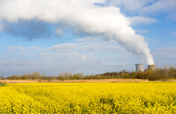 Wildflowers Bloom Under Nuclear Power Plant Exhaust Plume Stock Photography