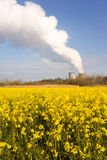 Wildflowers Bloom Under Nuclear Power Plant Exhaust Plume Stock Image