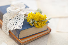 Wildflowers and books on the table. Outddor Stock Images