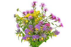 Wildflowers bouquet Royalty Free Stock Images