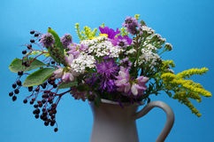 Wildflowers. A bouquet of wildflowers for a blue background royalty free stock image