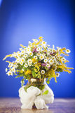 Wildflowers bouquet Royalty Free Stock Image