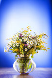 Wildflowers bouquet Stock Image