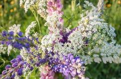 Wildflowers bukiet Obraz Royalty Free