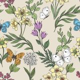 Wildflowers and butterflies background stock illustration
