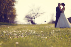 Wildflowers con la novia y el novio como siluetas Imagen de archivo