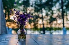 Wildflowers d'été dans un vase en verre sur le fond de coucher du soleil Images stock