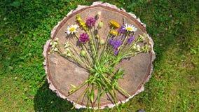 Wildflowers d'été sur le fond en bois Un beau bouquet d'été sur un fond en bois Camomille, ail sauvage, Veronica long image libre de droits