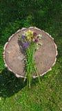 Wildflowers d'été sur le fond en bois Un beau bouquet d'été sur un fond en bois Camomille, ail sauvage, Veronica long images libres de droits