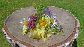 Wildflowers d'été sur un fond en bois Un beau bouquet d'été sur un fond en bois Camomille, ail sauvage, Veronica longtemps images libres de droits