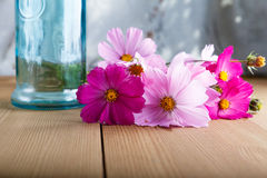 Wildflowers de campagne sur la table dans le matin Photos stock