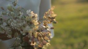 Wildflowers in de handen van het meisjesclose-up stock video