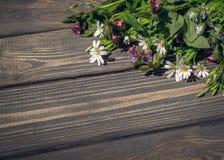 Wildflowers delicados e fundo de madeira marrom natural Fotos de Stock