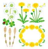 Wildflowers della primavera isolati royalty illustrazione gratis