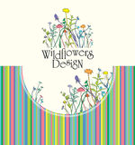 Wildflowers Design. Royalty Free Stock Photography