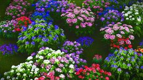Wildflowers do verão na rendição do prado 3d Fotos de Stock Royalty Free