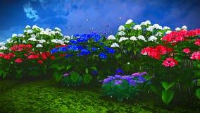 Wildflowers do verão na rendição do prado 3d Fotografia de Stock