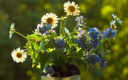 Wildflowers e camomilas no vaso de vidro Fotos de Stock Royalty Free