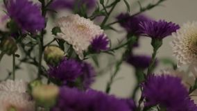 Wildflowers in een vaas stock video