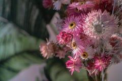 Wildflowers in einem Vase an einem sonnigen Tag Lizenzfreie Stockfotografie