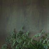 Wildflowers en fondo de madera Imagenes de archivo