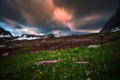 Wildflowers en motiewolken bij Gletsjer Nationaal Park Stock Foto