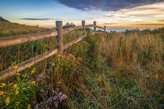 Wildflowers en Omheining Along Appalachian Sleep 2 Stock Afbeeldingen