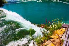 Wildflowers en watervallen Stock Fotografie