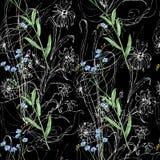 Wildflowers et fleurs graphiques d'aquarelle sur un fond noir Configuration sans joint florale illustration de vecteur