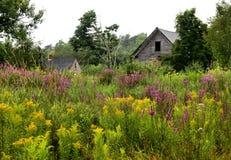 Wildflowers et grange Photos stock