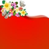 Wildflowers-2 Stock Image