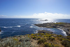 Wildflowers frame this view from above a cove. Looking westward into the misty marine layer of the Pacific Ocean stock photography