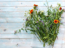 Wildflowers freshly from a field, copyspace, topview Royalty Free Stock Photos