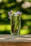 Wildflowers in Glas in openlucht stock afbeeldingen