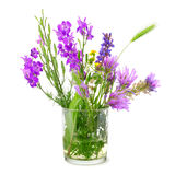 Wildflowers in glass isolated on white Stock Image