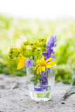 Wildflowers in glass vase Stock Photo