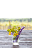 Wildflowers in glass vase Royalty Free Stock Image
