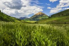 Summer in Crested Butte Colorado Stock Photography